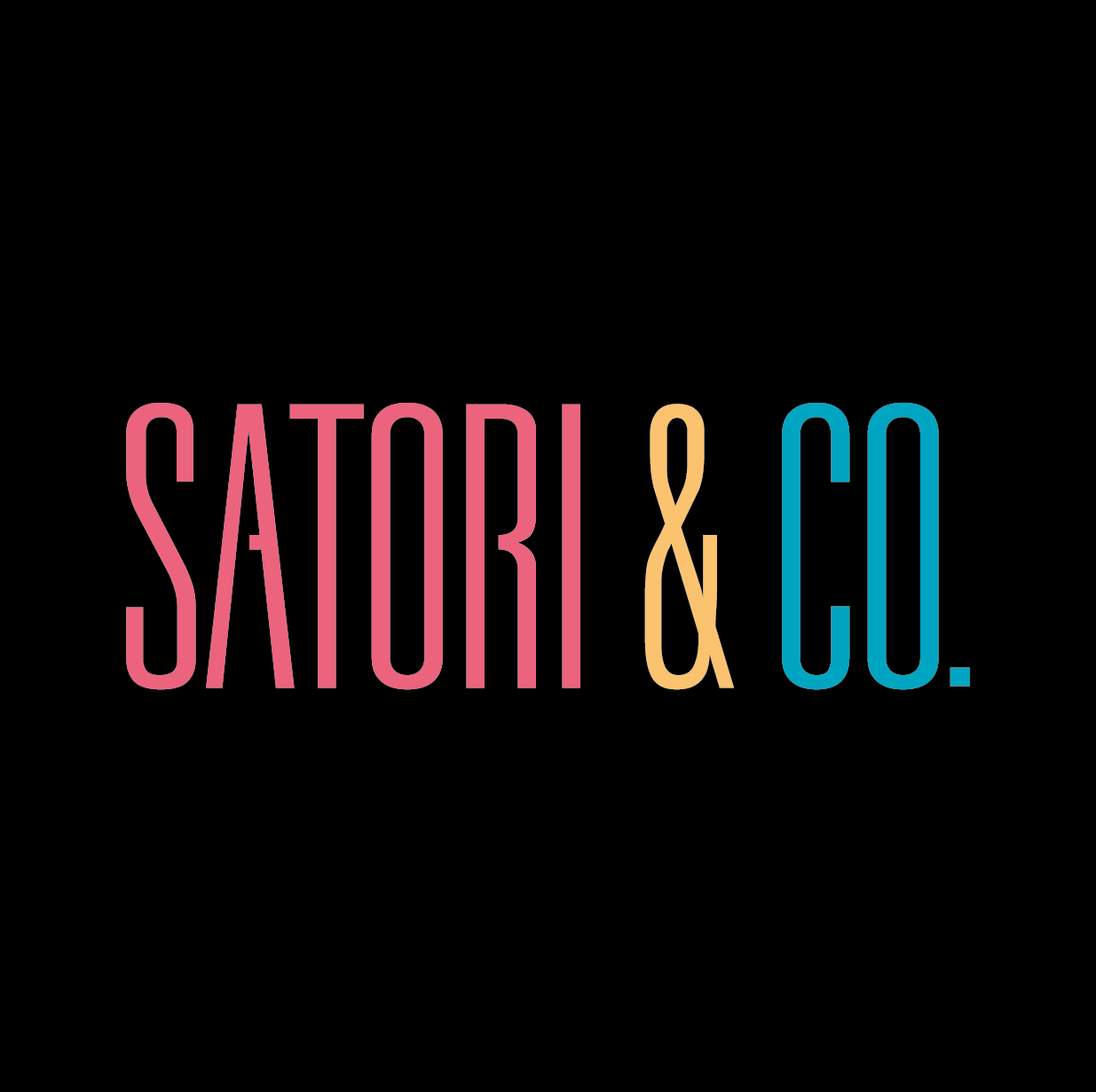 SATORI & Co. VALUE PROP VIDEO